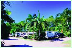 Tropical Hibiscus Caravan Park - Byron Bay Accommodations