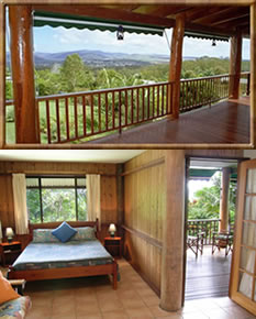 Atherton Blue Gum - Byron Bay Accommodations