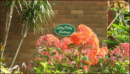 Lillypilly - Byron Bay Accommodations