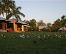 Feathers Sanctuary - Byron Bay Accommodations