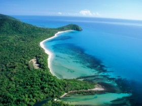 Cape Tribulation Camping - Byron Bay Accommodations