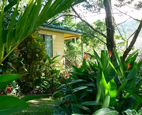 Daintree Valley Haven - Byron Bay Accommodations