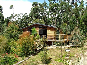 Southern Forest Accommodation - Byron Bay Accommodations