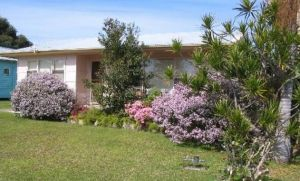 Maeville Cottage - Byron Bay Accommodation