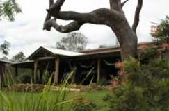 The Hollow Log Country Retreat - Byron Bay Accommodations