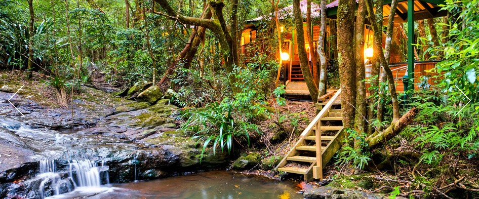 The Mouses House - Rainforest Retreat - Byron Bay Accommodations