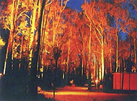 Dwellingup Chalet amp Caravan Park - Byron Bay Accommodations