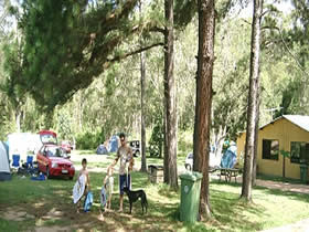 Glasshouse Mountains Holiday Village - Byron Bay Accommodations