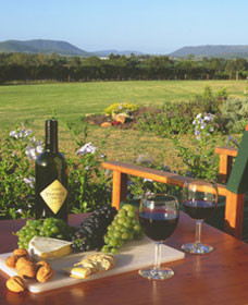 Tranquil Vale Vineyard Cottages - Byron Bay Accommodations