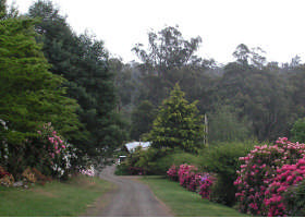 Mountain Rivers Lodge - Byron Bay Accommodations