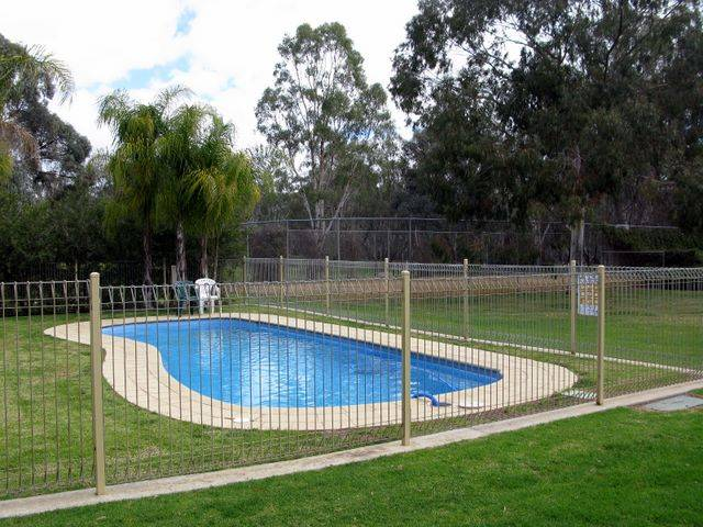 Pioneer Tourist Park - Byron Bay Accommodations
