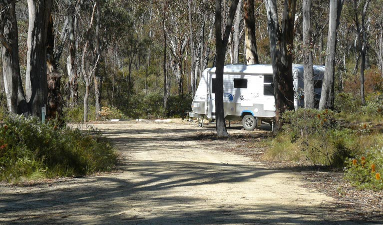 Blatherarm campground and picnic area - Byron Bay Accommodations