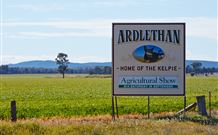 The Ardlethan Kelpie Caravan Park - Byron Bay Accommodations