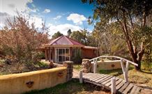 Starline Alpaca Farm Stay - Byron Bay Accommodations