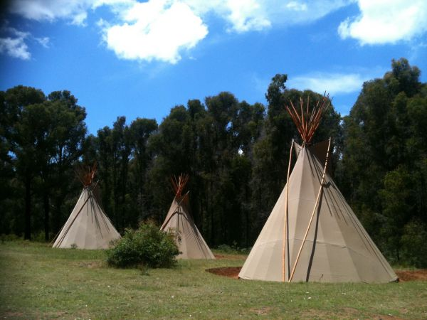 Kinglake Forest Adventures Camp - Byron Bay Accommodations