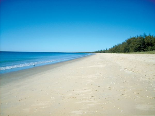 Woodgate Beach Tourist Park - Byron Bay Accommodations