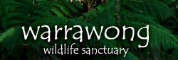 Warrawong Wildlife Park - Byron Bay Accommodations