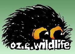 OZe Wildlife - Byron Bay Accommodations