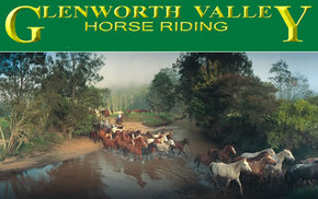 Glenworth Valley Horseriding - Byron Bay Accommodations