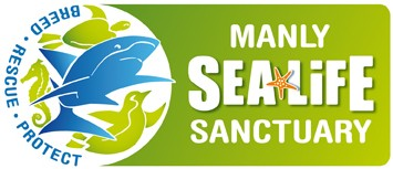 Manly SEA LIFE Sanctuary - Byron Bay Accommodations