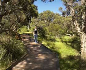 Leschenault Peninsula Conservation Park - Byron Bay Accommodations