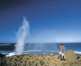 The Blowholes Carnarvon - Byron Bay Accommodations
