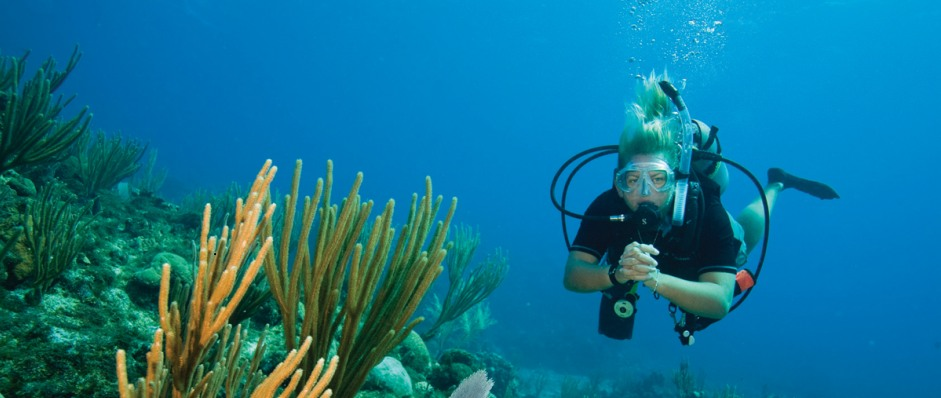 Coastal Water Dive - Byron Bay Accommodations