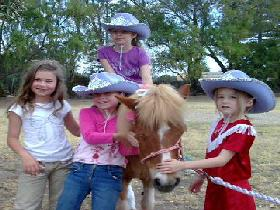 Amberainbow Pony Rides - Byron Bay Accommodations