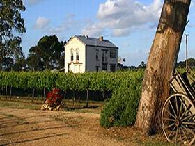 Highbank Vineyards - Byron Bay Accommodations