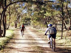 Bike About Mountain Bike Tours And Hire - Byron Bay Accommodation