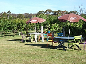 Cerise Brook Orchard  Family Golf - Byron Bay Accommodations