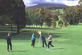 Deloraine Golf Course - Byron Bay Accommodations