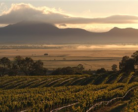 Montara Wines - Byron Bay Accommodations