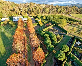 High Country Maze - Byron Bay Accommodations