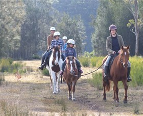 Horse Riding at Oaks Ranch and Country Club - Byron Bay Accommodations