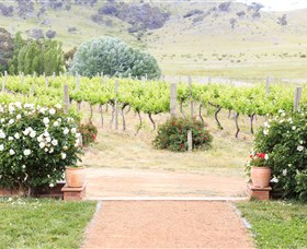 Brindabella Hills Winery - Byron Bay Accommodations