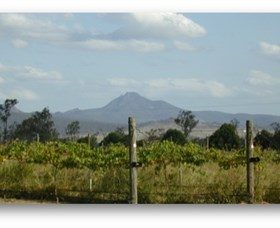 Ironbark Ridge Vineyard - Byron Bay Accommodations