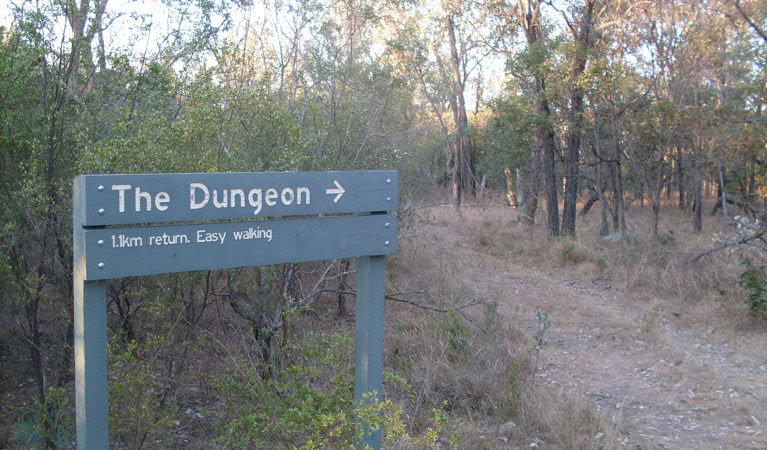 Dungeon lookout - Byron Bay Accommodations