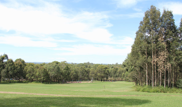 Rouse Hill Regional Park - Byron Bay Accommodations