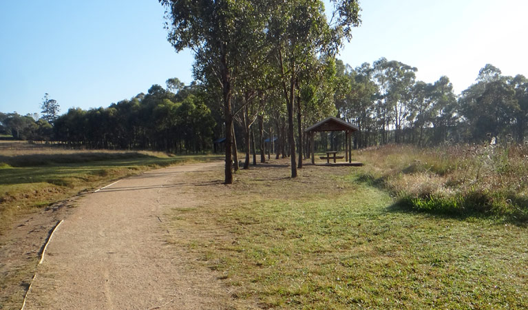 Rouse Hill Estate walk - Byron Bay Accommodations