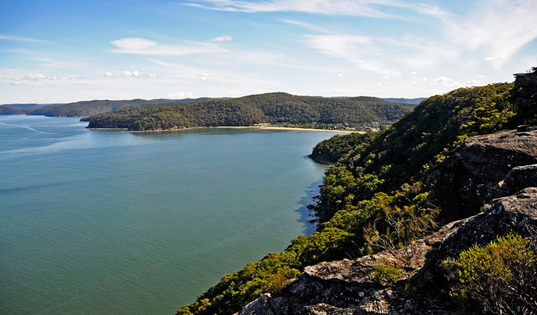 Brisbane Water National Park - Byron Bay Accommodations