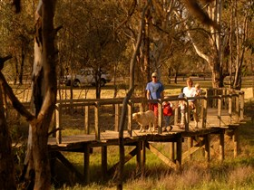 Loxton's Drives Walks and Trails - Byron Bay Accommodations