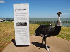 Birdman of the Coorong - Byron Bay Accommodations
