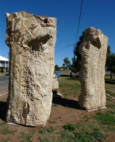 Fossilised Forrest Sculptures - Byron Bay Accommodations