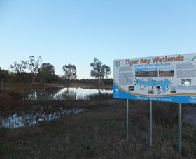 Tiger Bay Wetlands - Byron Bay Accommodations