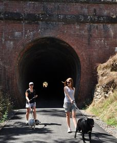 Cheviot Tunnel - Byron Bay Accommodations
