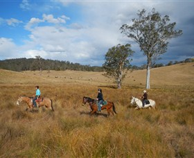 Chapman Valley Horse Riding - Byron Bay Accommodations