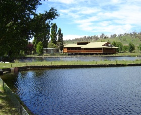 Gaden Trout Hatchery - Byron Bay Accommodations