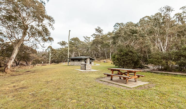Thredbo River picnic area - Byron Bay Accommodations