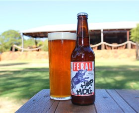 Feral Brewing Company - Byron Bay Accommodations